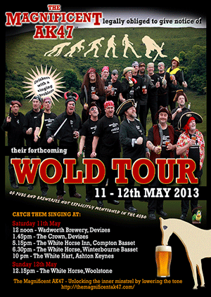wold tour 2013